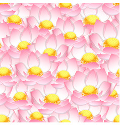 Pink indian lotus seamless background vector