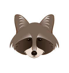 Raccoon in cartoon style vector