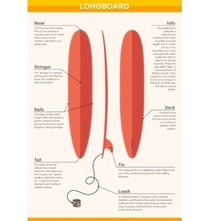 Red long board infographic leaflet vector