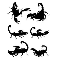 scorpions gesture animal silhouette vector image
