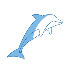 dolphin fish marine animal wildlife vector image vector image