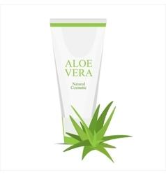 Aloe vera cream vector image