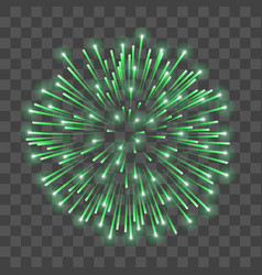 beautiful green firework bright salute isolated vector image