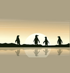 Collection penguin reflection scenery vector