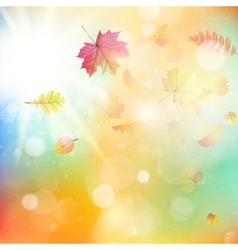 Leaves in autumn forest EPS 10 vector