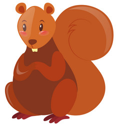 squirrel with brown fur vector image