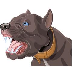 barking dog vector image
