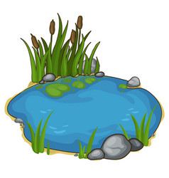 small lake with reeds in cartoon style vector image vector image