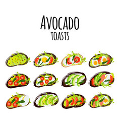 avocado toasts with different vector image