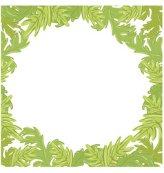 Frame of leaves icon vector