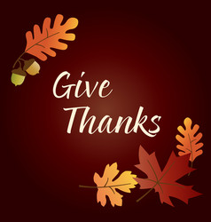 give thanks thanksgiving graphic with acorns and l vector image