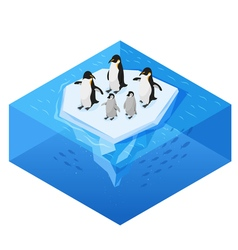 Isometric 3d realistic style of penguins on the vector image