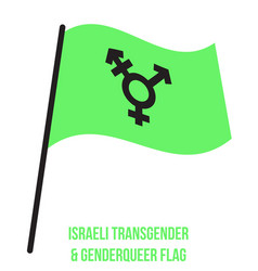 Israeli transgender genderqueer flag waving vector