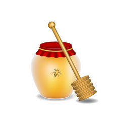 Sweet honey honey bee and wooden honey dipper vector