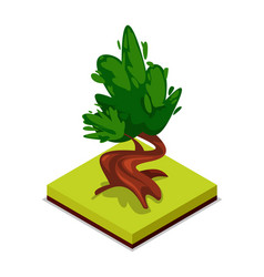green chestnut tree isometric 3d icon vector image