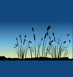 Coarse grass on hill scenery silhouettes vector