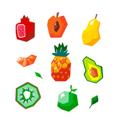 exotic geometric fruit set vector image
