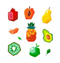exotic geometric fruit set vector image