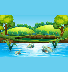 fish in pond vector image
