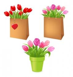 Floral bouquets vector