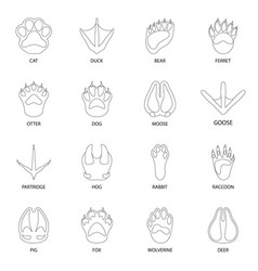Foot and footprint logo vector