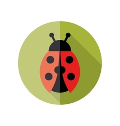 Ladybird flat icon vector