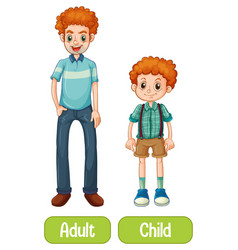 opposite words with child and adult vector image
