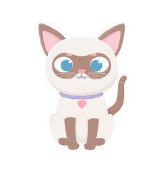 Siamese cat with collar heart pets vector