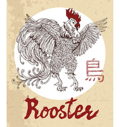 chinese zodiac symbol of etching rooster vector image