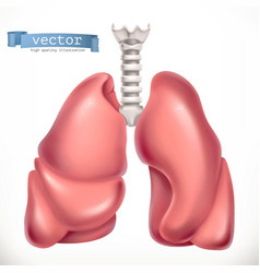 Lungs medicine internal organs 3d icon vector