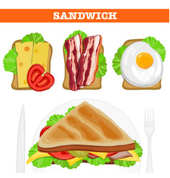 set of various sandwiches vector image