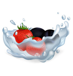 strawberries and blueberries in water vector image