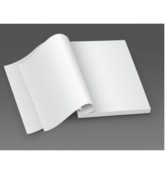 white blank open magazine vector image
