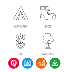 maple tree camping tent and hiking boots vector image vector image