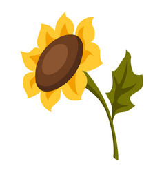 cartoon ripe sunflower vector image