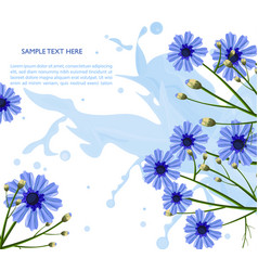 chamomile blue flowers pattern floral vector image