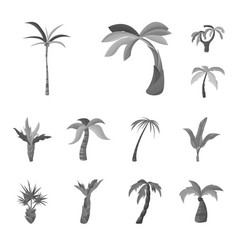 design jungle and botanical icon set of vector image
