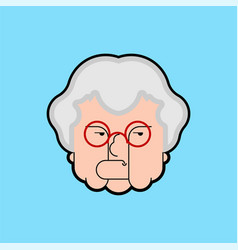 evil grandmother old hag bad grandma old lady vector image