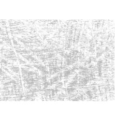 gray grunge scratched background vector image