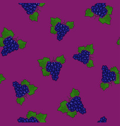 seamless pattern grapes on dark lilac background vector image