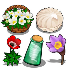 set of flowers marshmallows and bottle of wind vector image