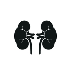 Simple icon of human kidneys Isolated vector image