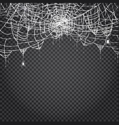 Spider and web isolated on transparent background vector