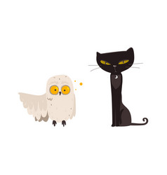 Spooky black cat and white owl halloween objects vector
