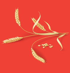 Wheat ears on red vector