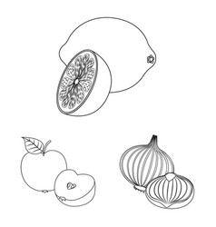 Design of vegetable and fruit icon set of vector