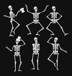 homan skeletons silhouettes in different poses vector image