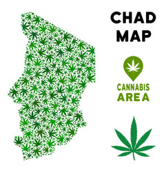 marijuana mosaic chad map vector image