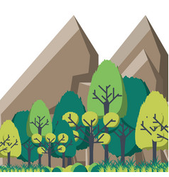 mountain landscape with forest and rocks vector image