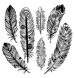Set of ethnic feathers vector